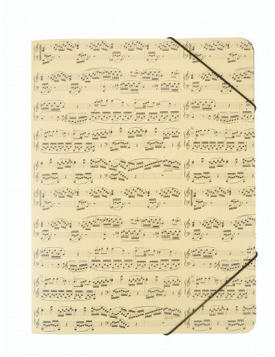 Elastic folder notelines A4